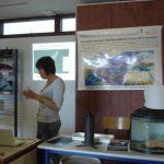 CEFREM-anguille-004